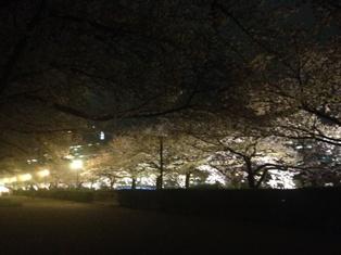 spring 023.jpg