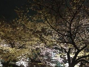 spring 024.jpg