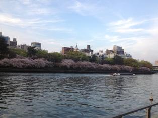 spring 036.jpg