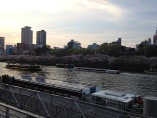 spring 037.jpg